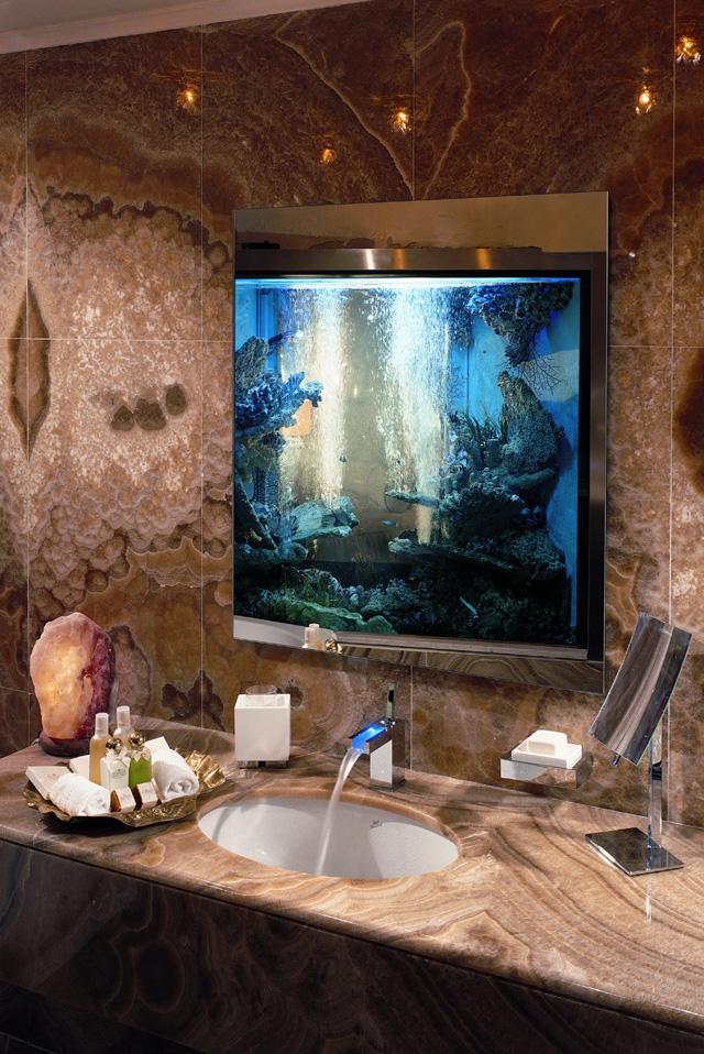 Acquari privati e aziende acquario57 for Acquario da parete